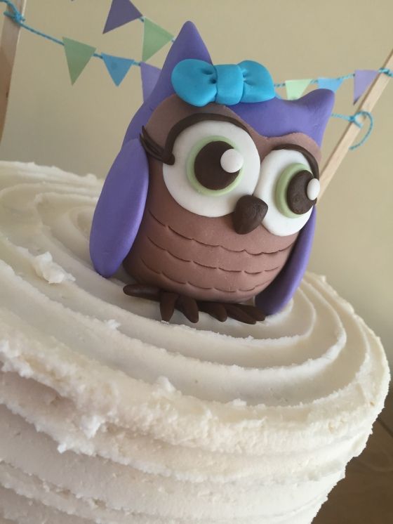 Owl Cake Close-up